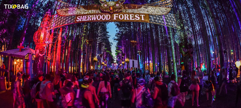 Electric-Forest-Music-Festival-Ticket